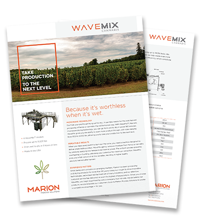 Marion_cannabis_Flyer